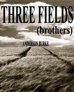 THREE FIELDS